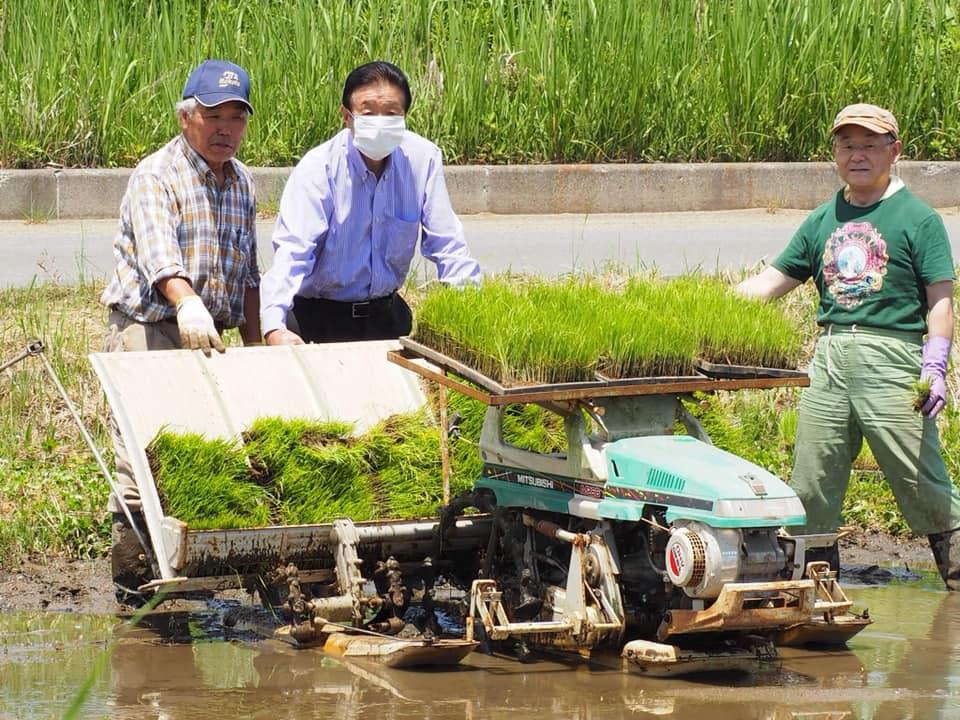 『ふゆみず田んぼプロジェクト』での田植えに飛び入り参加